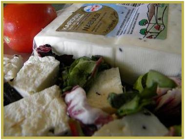 Authentic Nabulsi Cheese